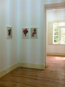Project Room Bairro dos Livros na 17ª Bienal de Cerveira: Nuno Neto, Porto, Portugal